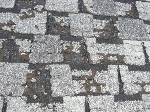 Michigan Shingle deterioration