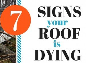 Looking Roofs Signs