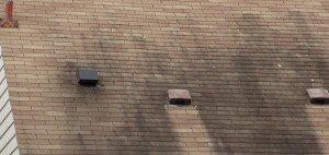 black spots on the roof