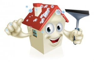 Roof Shingles Cleaning